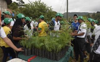 Reforestación Los Pinos